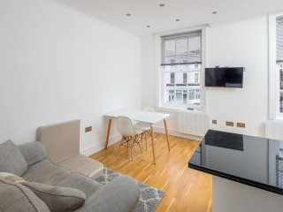 Bright 1 bed Apartment in Camden