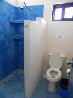 Bathroom has walk-in shower with plenty of pressurized hot water.