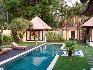 POOL VILLA Bali, Ubud, 14 mtr pool, 1.5k UBUD, Wifi, Parking, Security, Views