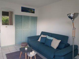 Studio Cosy (vue mer, accès plage)