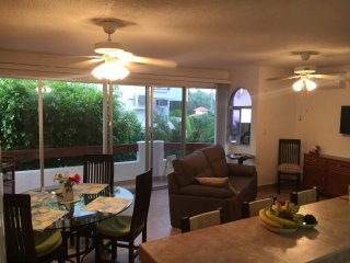 Ixtapa Condo~Sleeps 5-7~Pools and near beach