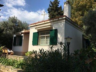 Beautiful villa with garden