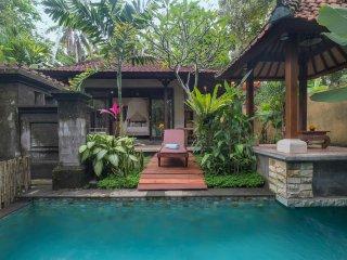 Private Villa in Heart Village Ubud- Virmas Villa