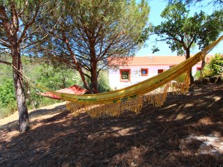 The Natural Elements Apartment 6km from the beach
