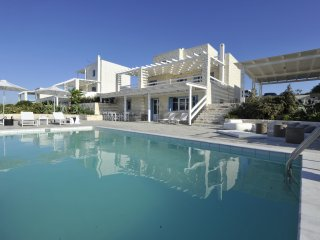 Villa Coral Executive 4 br private pool, walking distance to the beach, Naoussa