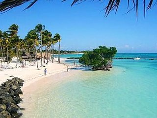 Punta Cana ECO. GREEN, LUSH CARIBBEAN ECO OASIS - RIGHT AT BEACH