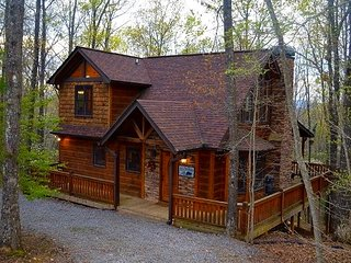 Nature's Nest Cabins: The Owl. Memories Await!