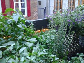 Jardin de fine herbes.