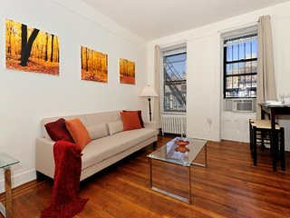 Central Park Delight #2 - One Bedroom Apartment - Apartment