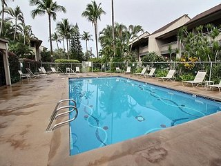 Kihei Bay Vista #C-108 1Bd Near Beach, Great Location, Great Rates! Sleeps 4