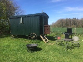 A charming Shepherd's Hut in a quiet location on our small farm in Milton Abbas