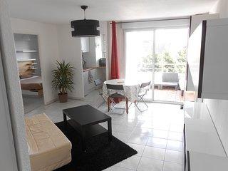 Appartement Vacances Toulouse Piscine