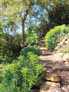 Stukje van onze mooi tuin