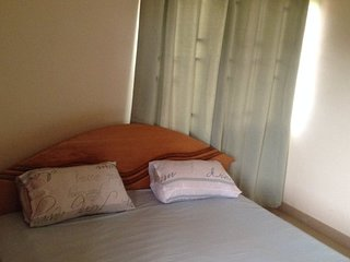 MOUNT PLEASANT PROPERTY / Bedroom #2