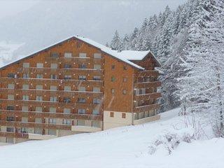 Beautiful apartment next to the piste in La Grande Terche near Morzine