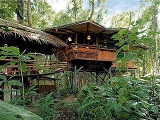 Tree House at Tree House Lodge