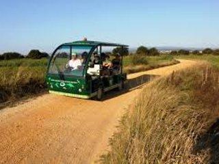 Visita guidata in auto elettrica - Bioria Salreu.