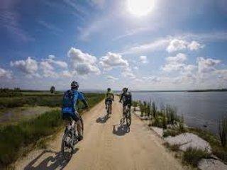 Bycicle ride - Bioria