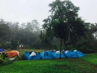 Coffee Plantation Homestay , Camp site - Tent 3- sharing 3 persons