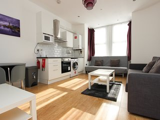 Large Renovated 1 Bed Sleeps 6 in NW London TR1
