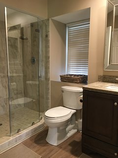 Newly renovated master bath W/ huge glassed-in shower, granite, vanity and more!