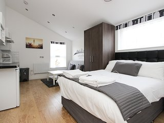 Large Renovated Studio Sleeps 4 in NW London TR3