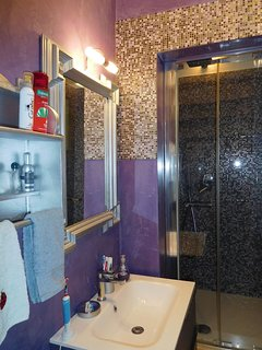 Bathroom with shower, toilet, hair dryer.