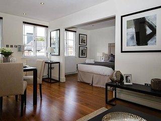 Spacious Studio Apartment in Knightsbridge