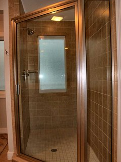 Master Bath Separate Shower