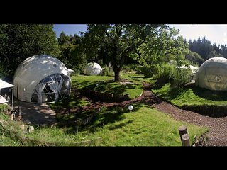 Stunning giant geodesic domes sleeping 9-16-20 in the Royal Forest of dean