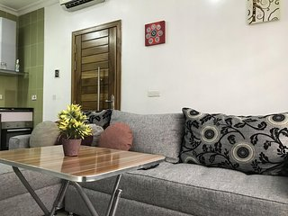 Pristine One Bedroom Apartment in Victoria Island Lagos