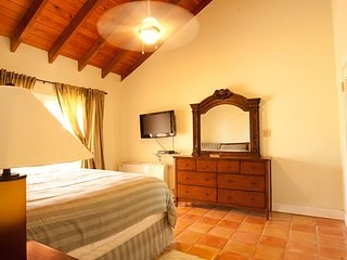 Ocean Beach Suites and Villas Bedroom 11, holiday rental in Spanish Town