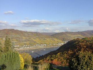 Schau-Rhein 1 - On top of Bacharach