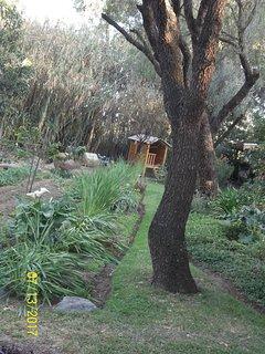 Jardín con casita de madera para jugar.