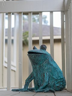 A fun frog welcomes you to this cottage!