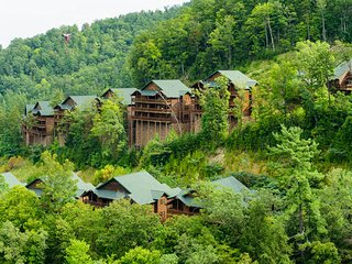 1 Bedroom Deluxe King Villa in the Smokey Mountains (sleeps 4)