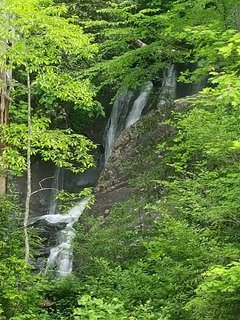 Don't forget to explore Waterfalls throughout the area, and Leatherwood falls, just up the road!