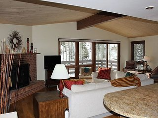 Luxury Ski in/Ski Out Condo - Awesome Views