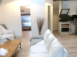 Beautiful apt in Dijon & Wifi