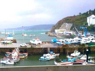 Beautiful apt with sea view