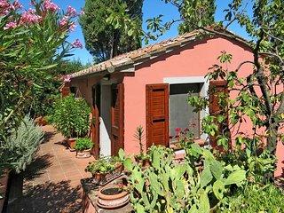 4 bedroom Villa in Orciatico, Tuscany, Italy : ref 5447464