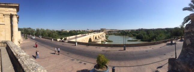 Views of the roman bridge in the city of Cordoba
