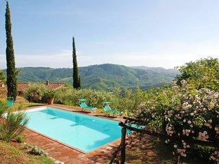 San Martino in Freddana-Monsagrati Villa Sleeps 10 with Pool and WiFi - 5696002