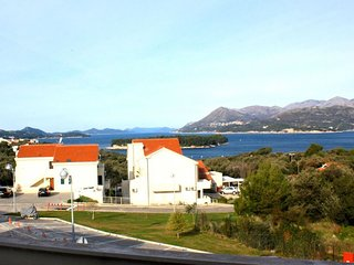 In Dubrovnik with Internet, Air conditioning, Parking, Garden (652012)