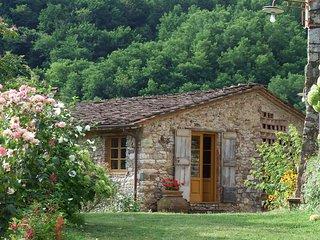 5 bedroom Villa in Bozzano, Tuscany, Italy : ref 5239249