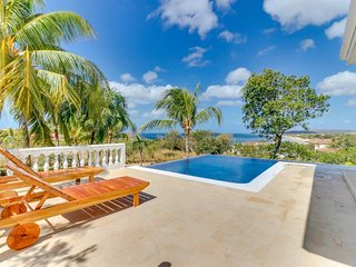 Dog-friendly, oceanview villa with private pool, nearby beach access, and more!
