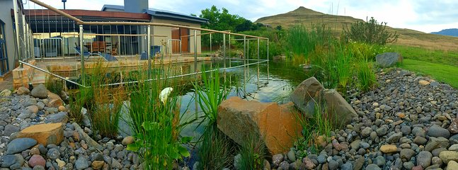The eco pool was completed recently and nature has stabilised the water beautifully.