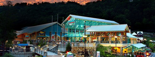 Ripley's Aquarium of the Smokies is terrific for your whole family!