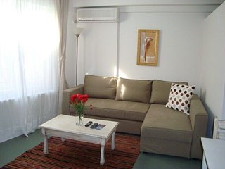 In Istanbul with Internet, Air conditioning, Lift, Washing machine (442918)
