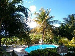 Logement Turquoise (bas de villa) jardin et piscine
